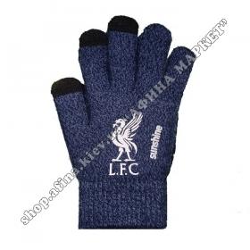 Спортивные перчатки футбольные детские Ливерпуль 2020 Blue